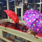 OMBRELLI - Ombrelli lunghi o riducibili uomo e donna in naylon o satin